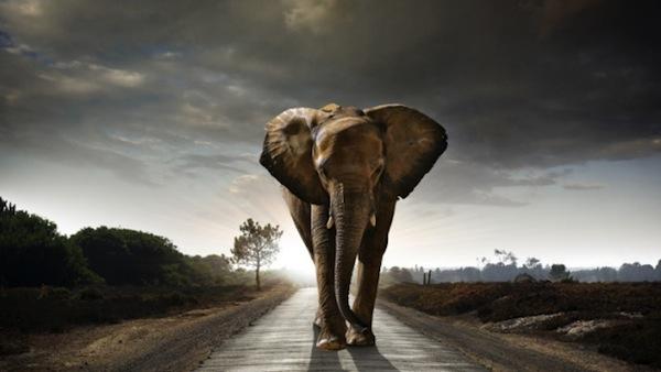 04 апреля 2021 года – 22 лунный день, символ дня – Слон, Ганеша