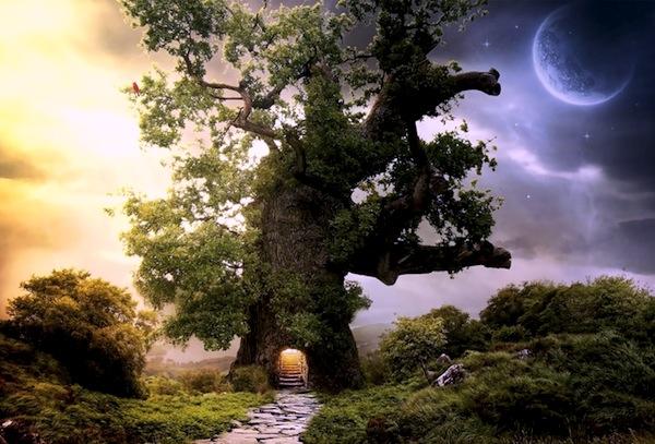 27 июня 2017 года – 4 лунный день, символ дня – Древо познания