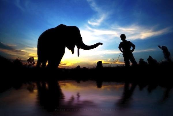 06 июня 2018 года – 22 лунный день, символ дня – Слон, Ганеша