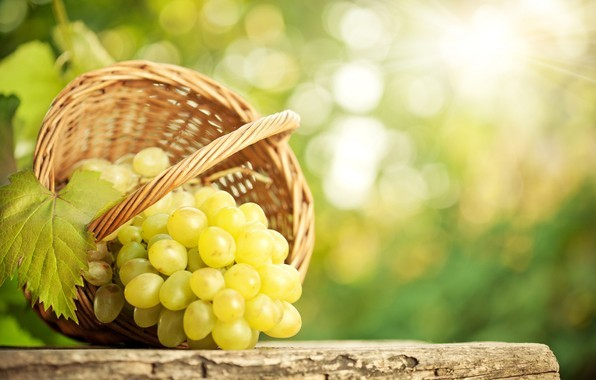 15 октября 2019 года – 17 лунный день, символ дня - Виноградная гроздь