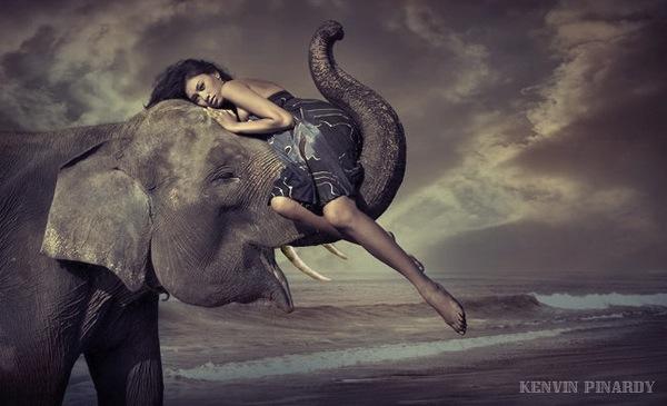 18 ноября 2019 года – 22 лунный день, символ дня – Слон, Ганеша