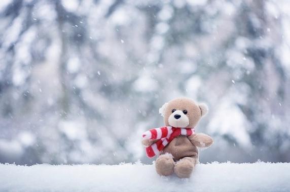 11 января 2018 года – 24 лунный день, символ дня – Медведь, Гора