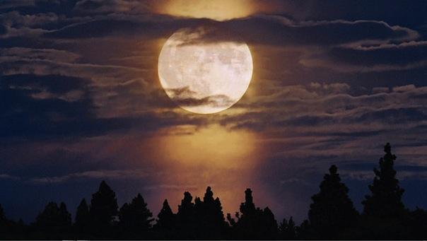 11 декабря 2019 года – 15 и 16 лунные дни