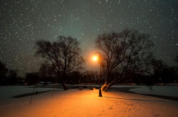 03 февраля 2019 года – 29 лунный день, символ дня – Гидра, Спрут