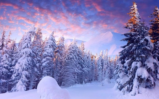 26 декабря 2016 года — 27 лунный день, символ дня – Трезубец, Жезл