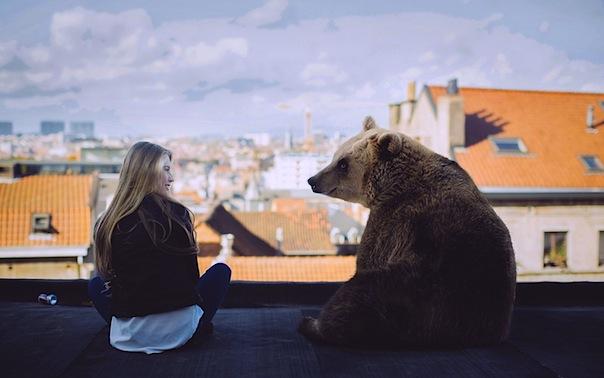 18 июня 2017 года – 24 лунный день, символ дня – Медведь, Гора