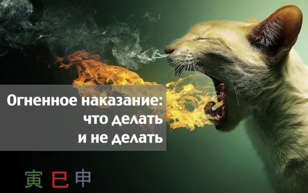 Огненное наказание: что делать и не делать