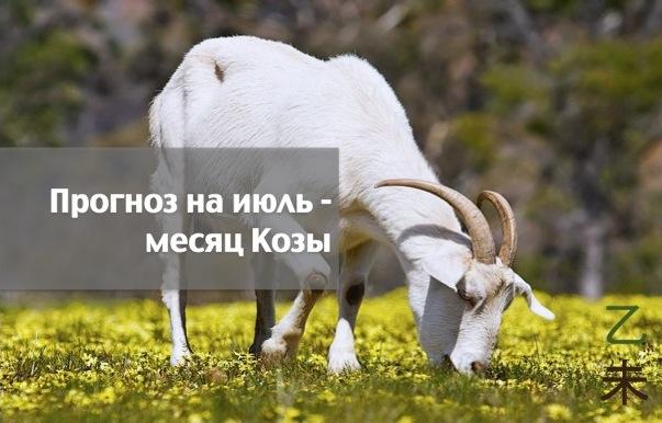 Прогноз Фэн-шуй на июль 2016 года — месяц Козы