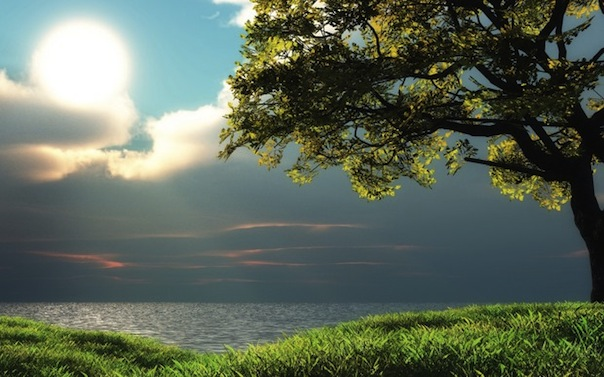 4 лунный день, символ дня – Древо познания