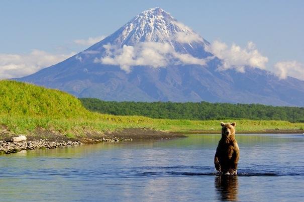 24 лунный день, символ дня – Медведь, Гора