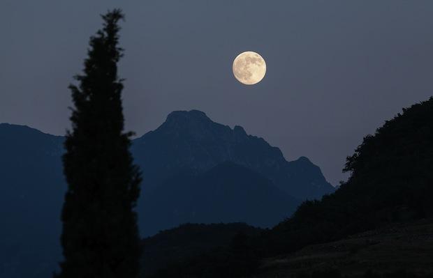 17 августа 2016 года – 15 лунный день, символ дня – Змея, Шакал