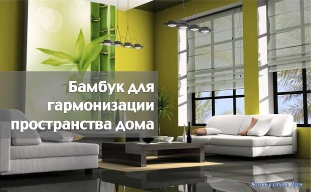 Бамбук для гармонизации пространства дома