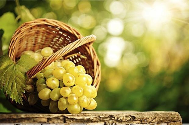 18 сентября 2016 года – 17 лунный день, символ дня – Виноградная гроздь