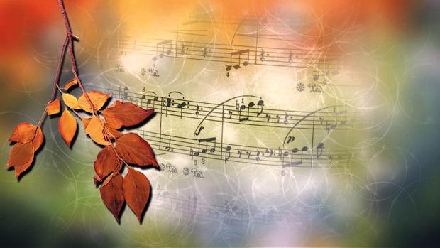 13 октября 2016 года – 14 лунный день, символ дня – Труба