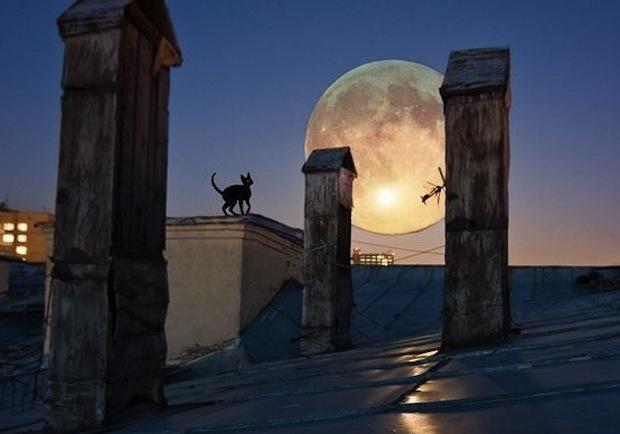 19 апреля 2017 года — 23 лунный день, символ дня – Химера, Крокодил Маккара