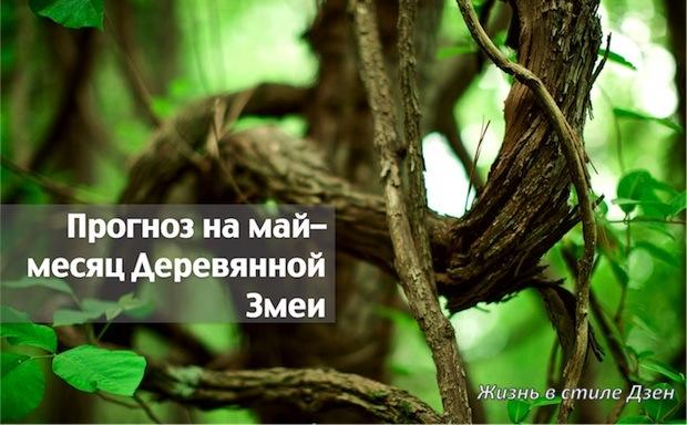 Прогноз Фэн-шуй на май 2017 года – месяц Деревянной Змеи