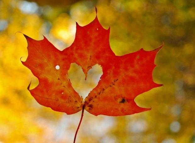 02 октября 2017 года – 12 лунный день, символ дня – Сердце