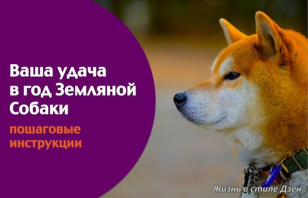 Фэншуй-2018. Секреты года Земляной Собаки