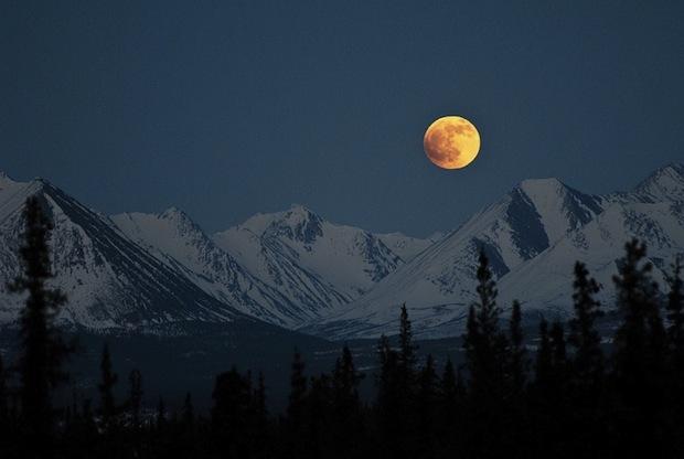 02 января 2018 года – полнолуние, 16 лунный день, символ дня – Голубь, Бабочка