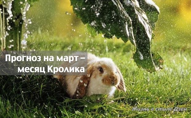 Прогноз Фэн-шуй на март 2018 года — месяц Деревянного Кролика