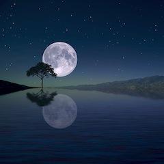 Календарь периодов Луны без курса в 2020 году