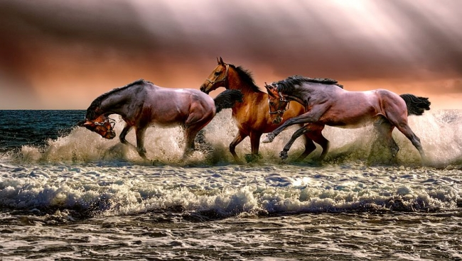 03 апреля 2021 года – 21 лунный день, символ дня – Храм, Табун лошадей